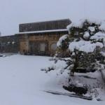 南国鹿児島で記録的な大雪。桜島の灰ではありません(笑)